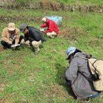 宇賀峡植物観察