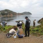 倉橋鹿島生物調査