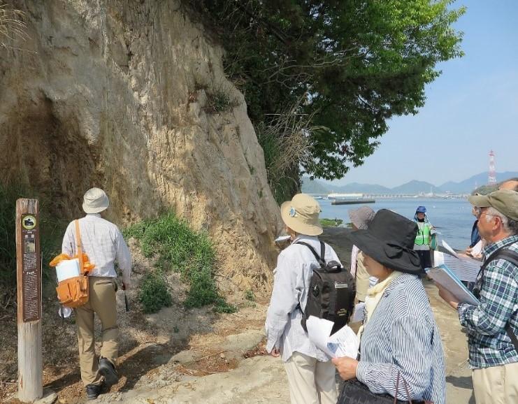 断層を観る(岩のすき間を熱湯が上がった跡が観えた)